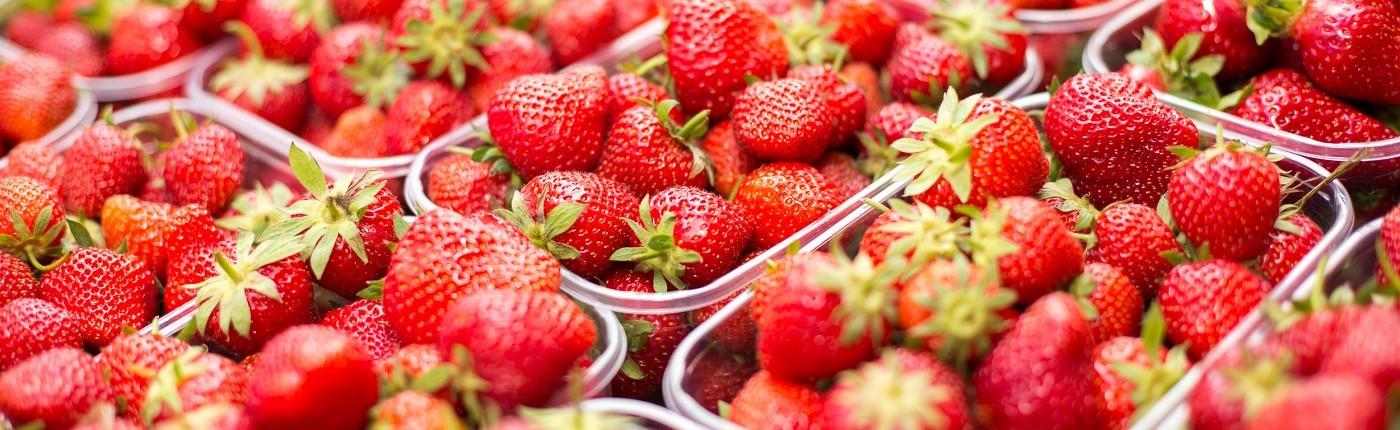 Erdbeerfest 2015 Impressionen (fotocredit charlysteiner.at)